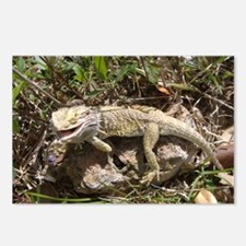 Spiny the Lizard Smiling Postcards (Package of 8)