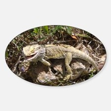 Spiny the Lizard Smiling Sticker (Oval)