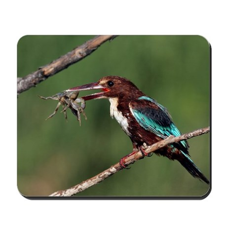 White-throated kingfisher Mousepad