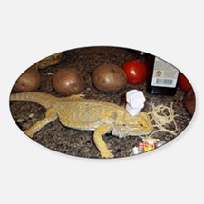 Chef Spiny the Lizard Sticker (Oval)