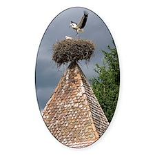 White storks nesting Decal
