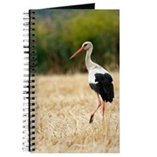 White stork Journal
