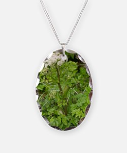 Wild angelica (Angelica sylves Necklace Oval Charm