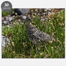 White-tailed ptarmigan on a mountainside Puzzle