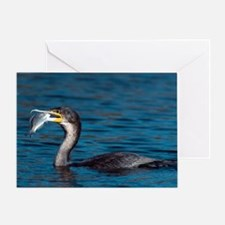 White-breasted cormorant with fish Greeting Card
