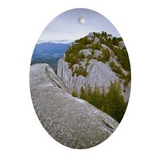 The Peaks Of Stawamus Chief, A Rock  Oval Ornament