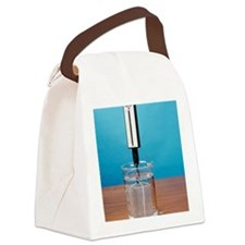 Weight in air and water, image 2  Canvas Lunch Bag