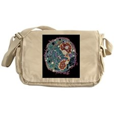 White blood cell, TEM Messenger Bag