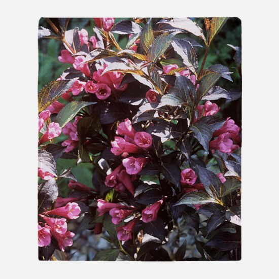 Weigela 'Naomi Campbell' Throw Blanket