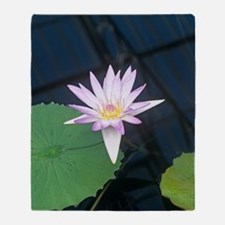 Water lily 'Blue Beauty' flower Throw Blanket