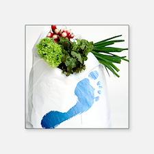 "Water footprint of vegetabl Square Sticker 3"" x 3"""