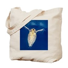 Water flea Tote Bag