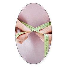 Waist size measurement Decal