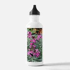 Wallflowers (Erysimum  Water Bottle
