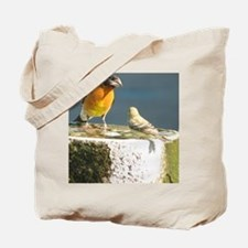 Beautiful Black Headed Grosbeak Tote Bag