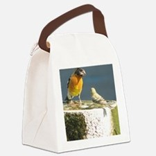 Beautiful Black Headed Grosbeak Canvas Lunch Bag