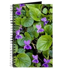 Viola odorata (Sweet Violets) Journal