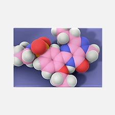 Viagra drug molecule Rectangle Magnet