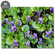 Viola odorata (Sweet Violets) Puzzle