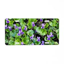 Viola odorata (Sweet Violet Aluminum License Plate