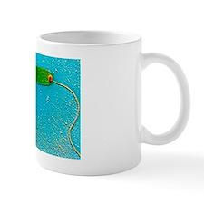 Vibrio cholerae bacterium Mug