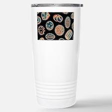 Various pollen grains Travel Mug