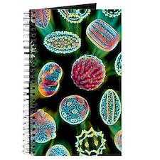 Various pollen grains Journal