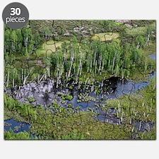 Tunguska forest Puzzle