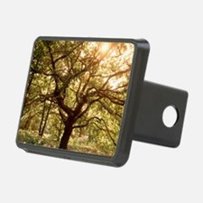Tree in spring Hitch Cover
