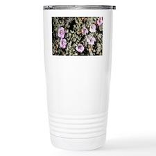 Tiquilia canescens var. pulchel Travel Mug