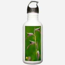 Tongue Orchid (Serapia Water Bottle