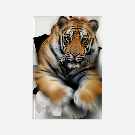 Tiger, artwork Rectangle Magnet