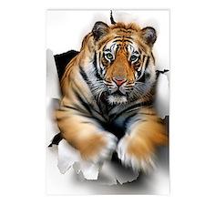 Tiger, artwork Postcards (Package of 8)