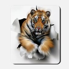 Tiger, artwork Mousepad