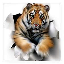 "Tiger, artwork Square Car Magnet 3"" x 3"""
