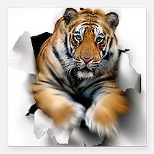 "Tiger, artwork Square Car Magnet 3"" x 3"""