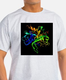 Thrombin protein, secondary structur T-Shirt