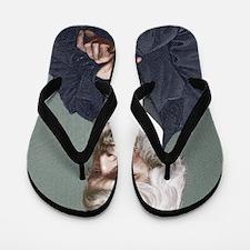 Thomas Carlyle, Scottish author Flip Flops