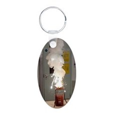 Thermite reaction Aluminum Oval Keychain