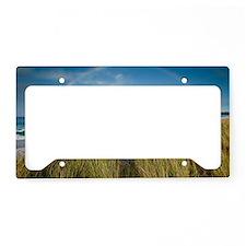 Rainbow Tasmania License Plate Holder