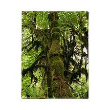 Temperate rainforest Twin Duvet