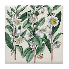 Tea plant Tile Coaster