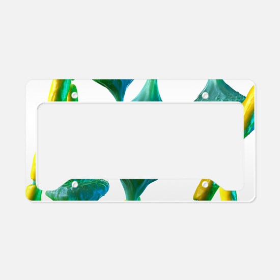 Synapses, artwork License Plate Holder