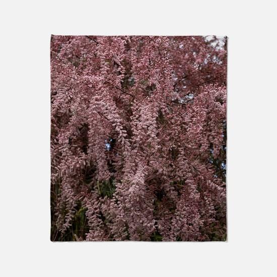 Tamarix blossom (Tamarix gallica) Throw Blanket