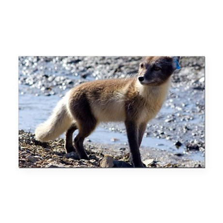 Tagged Arctic fox Rectangle Car Magnet