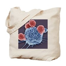 T lymphocytes and cancer cell, SEM Tote Bag