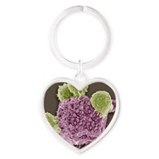 T lymphocytes and cancer cell, SEM Heart Keychain