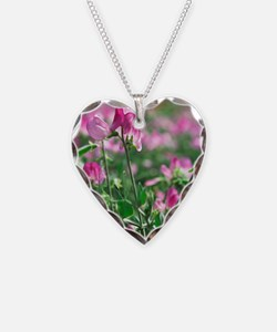 Sweet pea (Lathyrus odoratus  Necklace