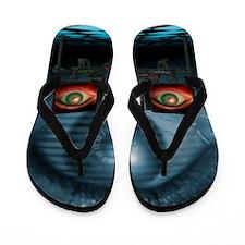 Surveillance, conceptual image Flip Flops