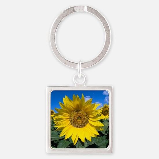 Sunflowers Square Keychain